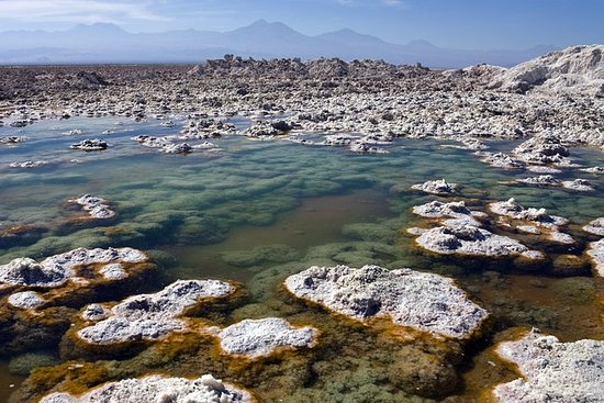 Atacama Salt Flat and Toconao Tour...