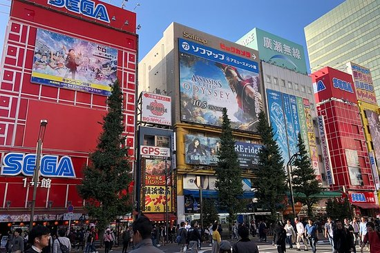 Akihabara Electric Town privat ...