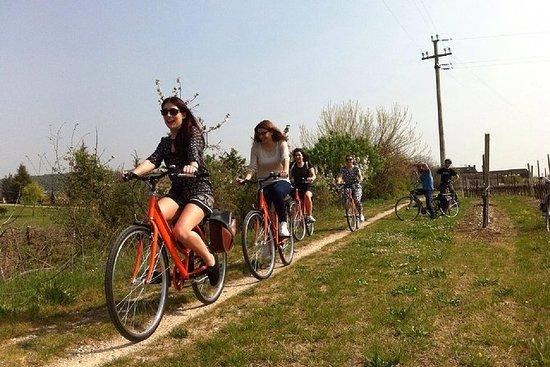 Plattelands e-bike tour van Amarone