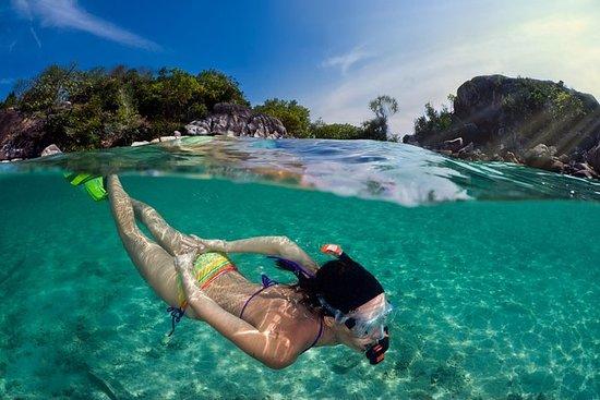 Snorkletur fra Koh Samui til øya Koh...