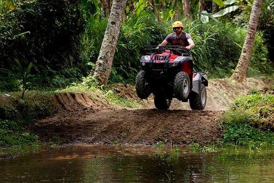 Ubud ATV Ride and Ritual Bathing at...