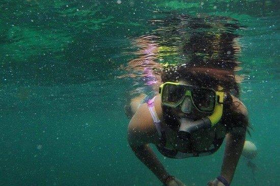 Snorkeltour van een hele dag in Pulau ...