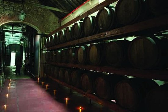 Azeitao: Wine Experience Guided Tour...