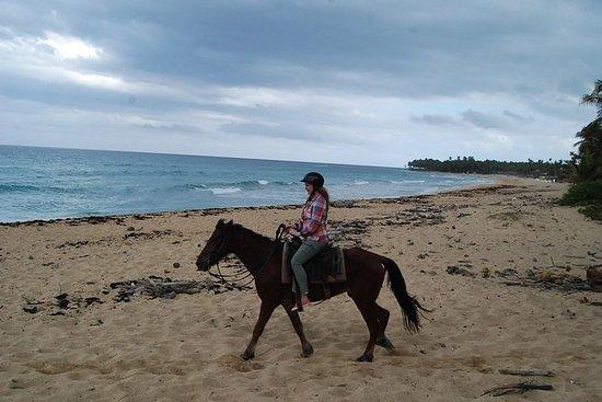 Punta Cana Ridning på stranden