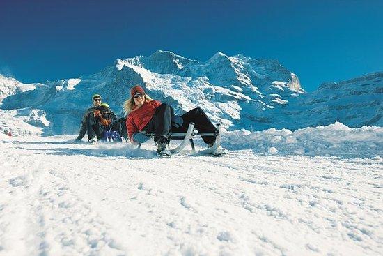 Schneeschuh- und Schlitten-Abenteuer...