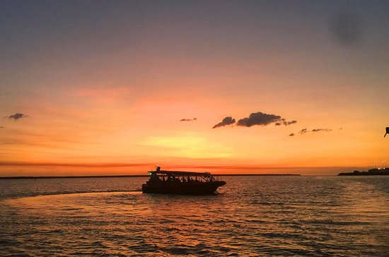 Darwin Sunset Cruise, Including Fish...