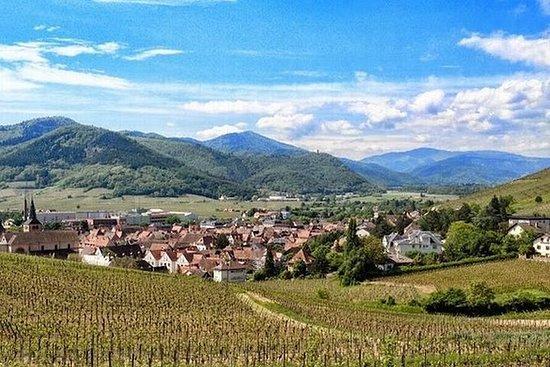 斯特拉斯堡的阿尔萨斯村庄和葡萄酒私人一日游