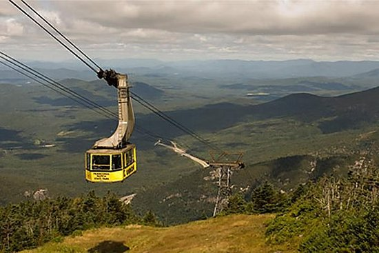 Full Day White Mountain Tour con el...