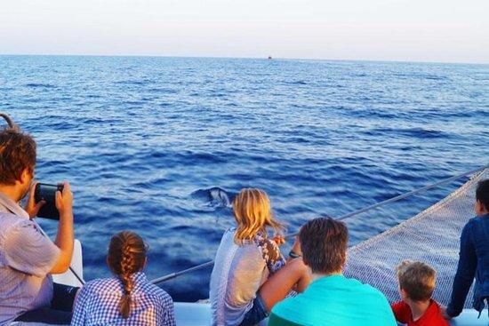 Sunrise Sailing Trip in Mallorca with...