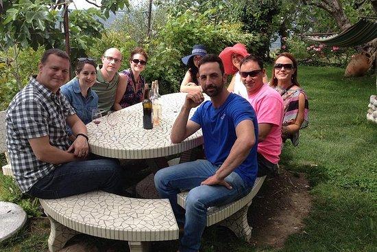 Fulldags liten gruppe Provence vin...