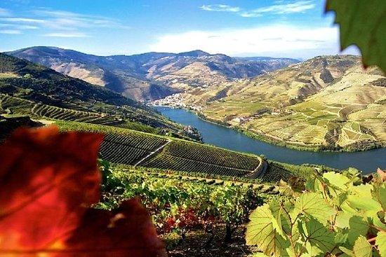 Authentic Douro Wine Tour Including...
