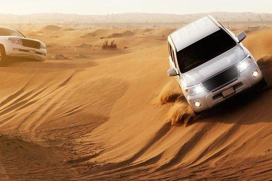 Safari por el desierto de Abu Dhabi...
