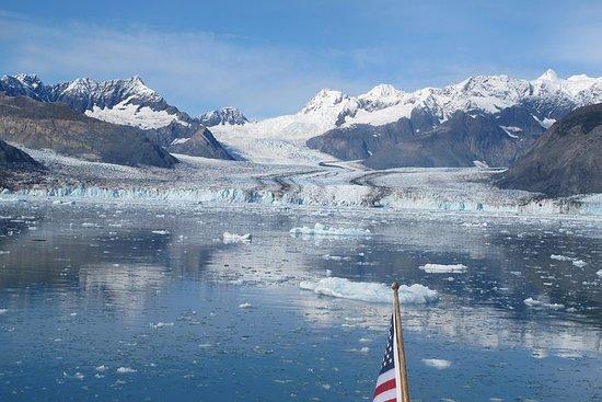 Crociera sul ghiacciaio Columbia da