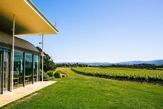 Gourmet Vineyard Lunch e Yarra Valley