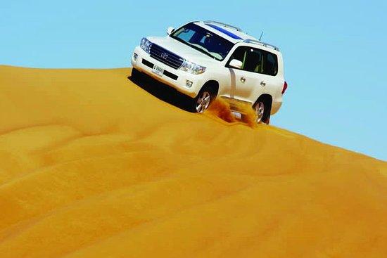 ドバイからの朝の砂漠のサファリ