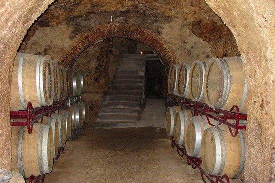 馬德里的葡萄酒廠一日遊,提供酒店接送和午餐