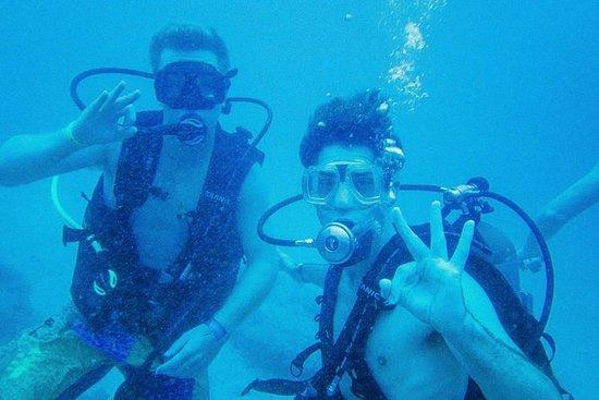 Discover Scuba Diving Marietas Islands