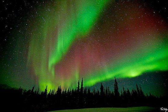 Polarlicht-Beobachtung in einer Hütte...