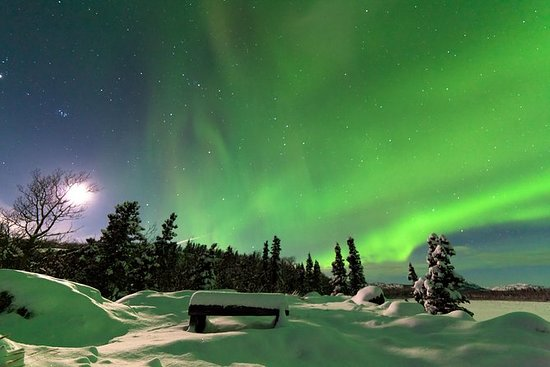 Arctic Circle and Northern Lights...