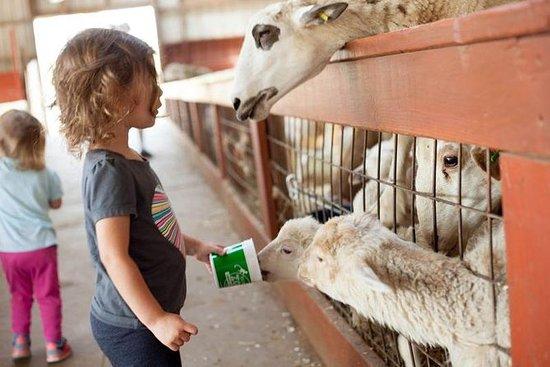 Paquete de admisión Zoofari de Roer