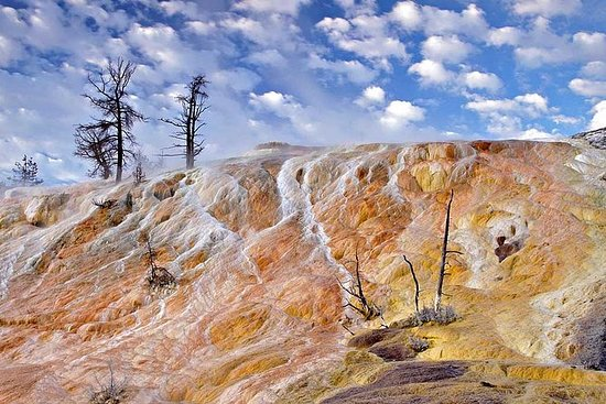 Tour Yellowstone Upper Loop desde...