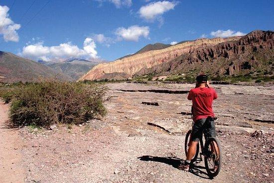 Half-Day Mountain Bike Tour to Juella...
