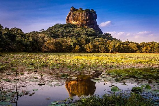 Private Day Trip a Sigiriya e