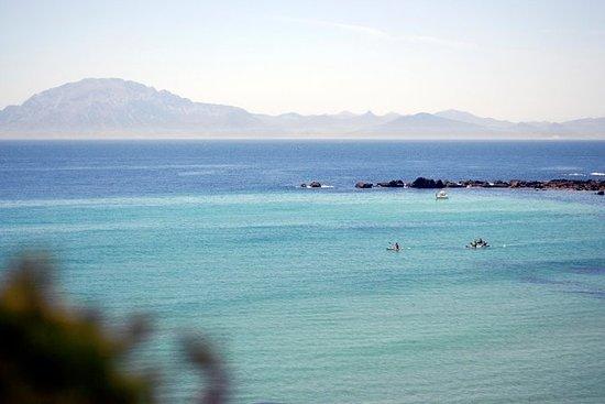 Kajakk & Snorkeltur i Gibraltar Strait