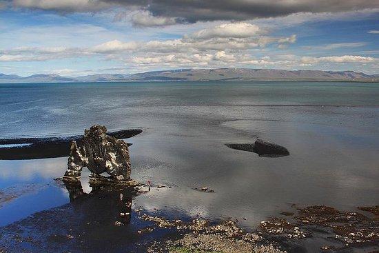Wild North Island Utforsking av Super...
