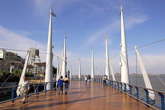 Visita de medio día por Guayaquil
