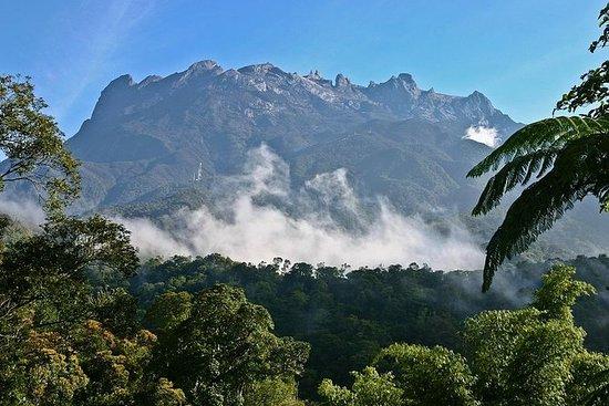 Tour di Kota Kinabalu Park e Poring