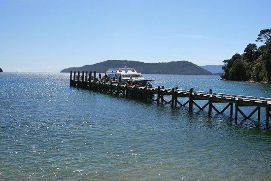Full-Day Marlborough Catamaran Cruise...