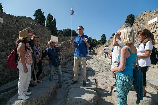 Pompeii og Mt. Vesuvius dagstur fra...