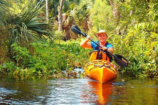 Excursión en kayak por el río Wekiva