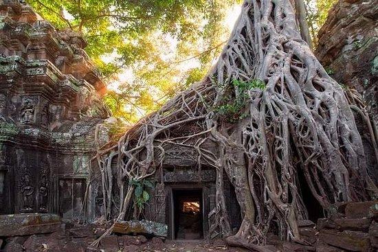 Banteay Kdei和Ta Prohm之旅包括高棉按摩和文化晚宴