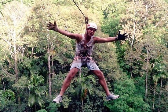 1-Day Rock Climbing and Treetop...