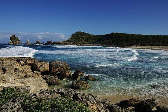 Visite de la Guadeloupe: culture et...
