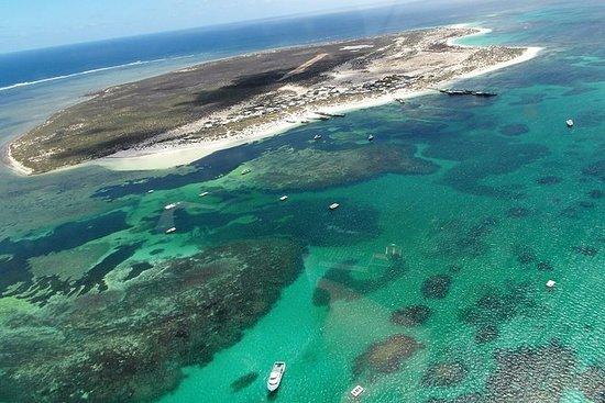 Abrolhos Flyover med morgente på East...