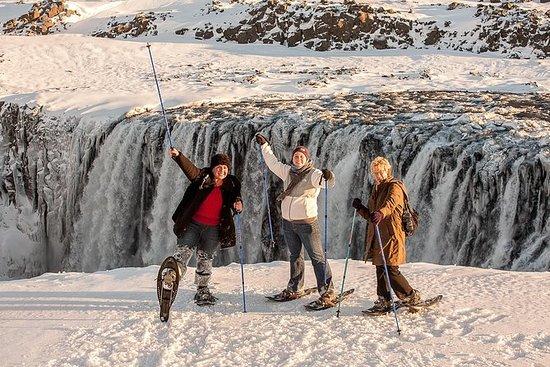 Dettifoss Fossettur fra Akureyri
