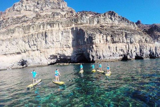 大加那利岛南部2小时的桨冲浪穿越