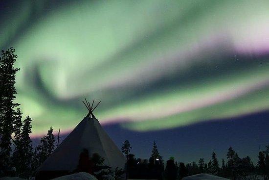 Husky Sled Ride Northern Lights Tour...