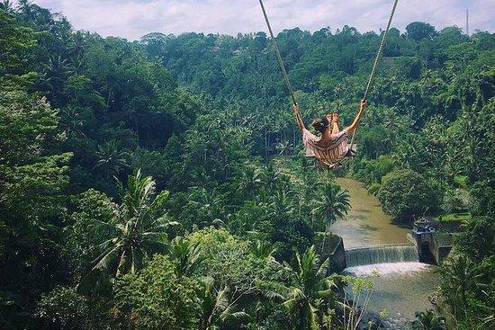 Demi-journée à Bali Swing à Ubud avec...