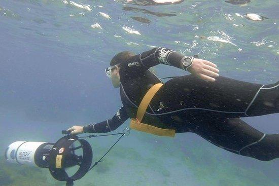 1 uur Power Snorkel Experience in Las ...