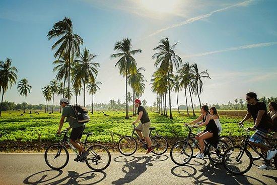 トロピカルバイクの冒険