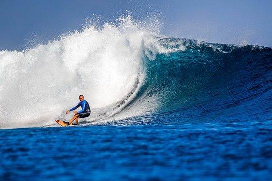 Excursion d'une journée de surfeurs...