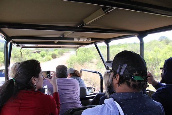 Full Day Ultimate Pilanesberg...