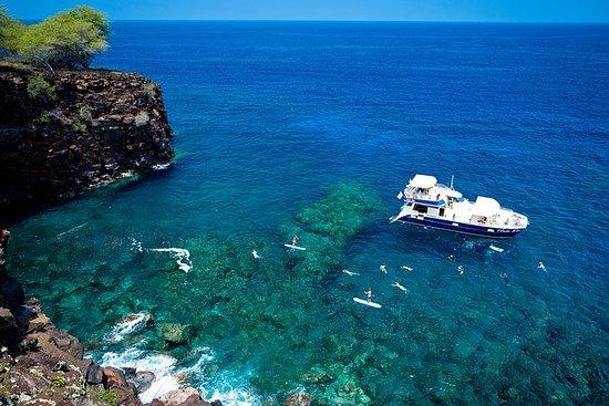 Deluxe Kona Coast Snorkel och BBQ ...
