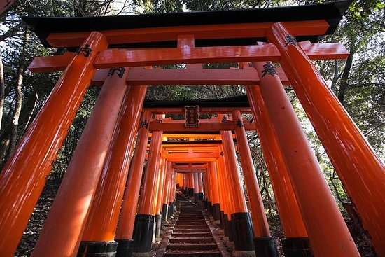 The Alternative Fushimi Inari Walking...