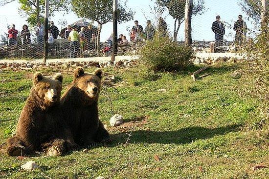 Wolfs- und Bärenpfad