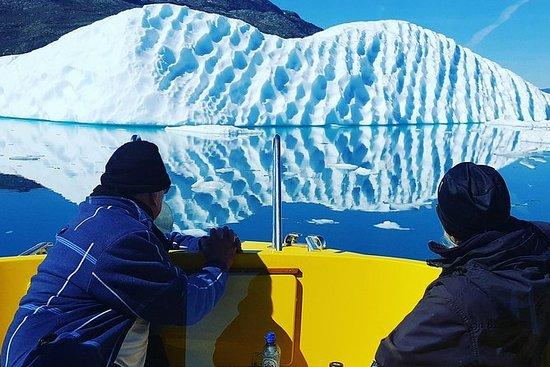 Gletscherfahrt - Offenes Boot